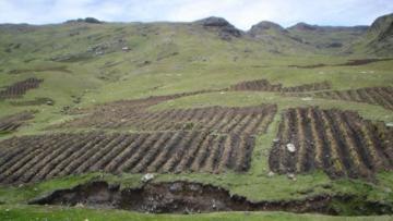 Minagri autorizó transferencia de S/ 9.8 millones a Sunarp para titulación y registro de tierras rurales