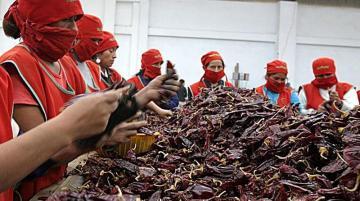 Perú exportó páprika entera por más de US$ 71 millones en 2020