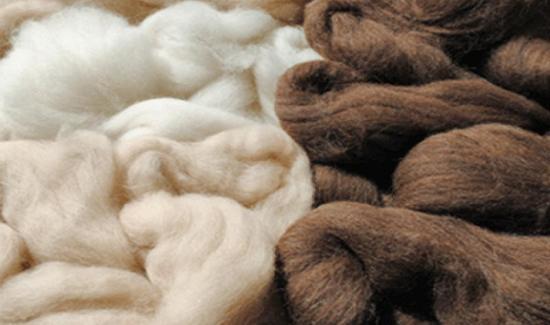Exportaciones de pelo fino de alpaca muestran importante caída en los primeros cinco meses de 2020