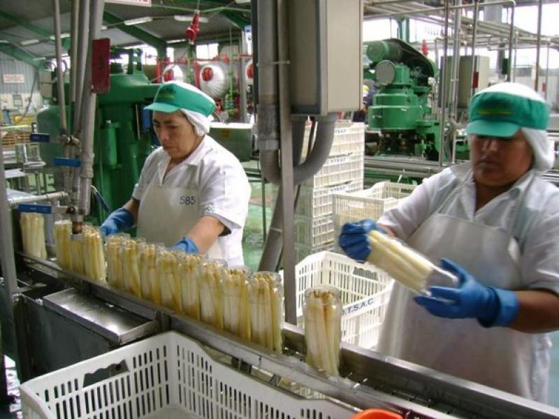 1.501 empresas dejaron de exportar en el primer trimestre del año