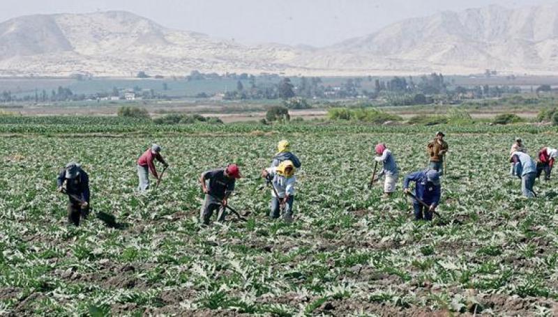 2ª. Reforma Agraria… mucho ruido y pocas nueces