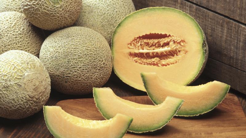 2017 marca un importante repunte en la exportación de melones frescos