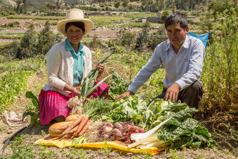 26 productores agroecológicos exhiben sus productos en rueda de negocios