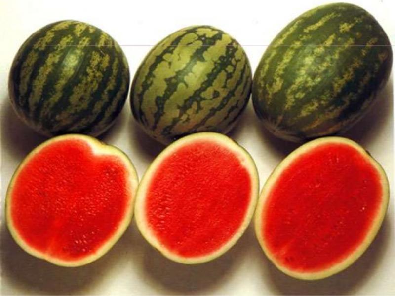 32 por ciento de consumidores en EE.UU. están interesados en comprar fruta genéticamente modificada que dure más