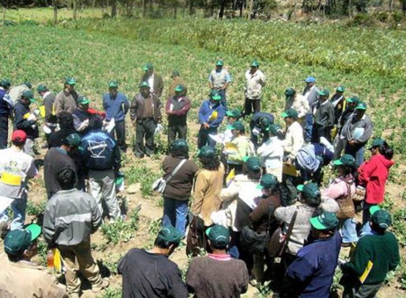 AGROBANCO CRECERÁ 30% EN EL 2011