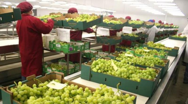 Agroexportaciones peruanas suman US$ 4.172 millones entre enero y septiembre del 2017
