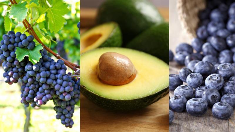 Agroexportaciones peruanas sumaron US$ 4.112 millones de enero a julio del 2021