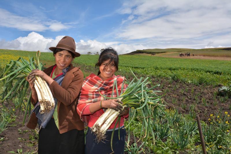 Aumenta el porcentaje de mujeres a cargo de explotaciones agropecuarias en América Latina y el Caribe