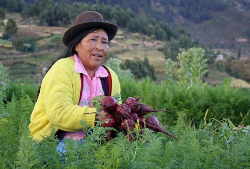 Ayacucho: Minagri entrega a autoridades guía para reducción de degradación de suelos en Huanta y Uchuraccay