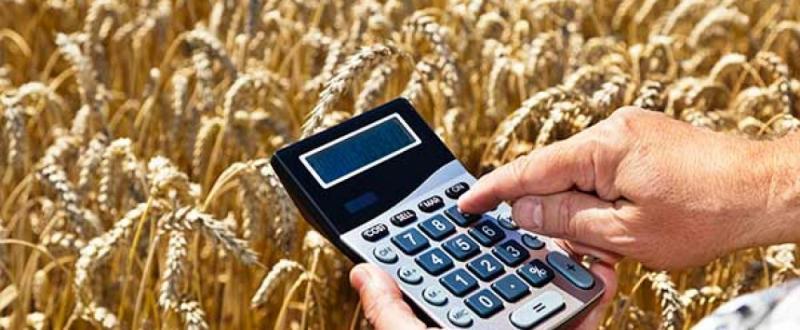 Balanza comercial agraria registró superávit de US$ 471 millones durante enero-abril del 2020