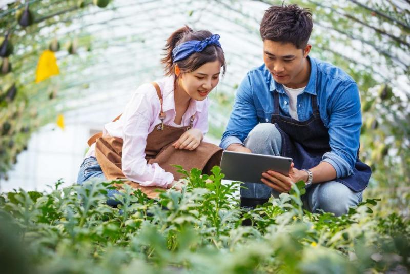 BASF presenta Ceyva®: Innovación en el cultivo de la uva