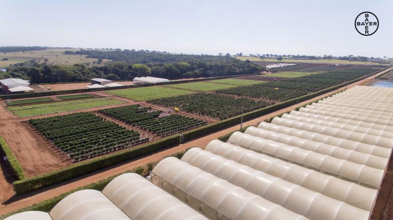 Bayer inauguró estación de investigación para mejoramiento genético de hortalizas y vegetales para el Hemisferio Sur