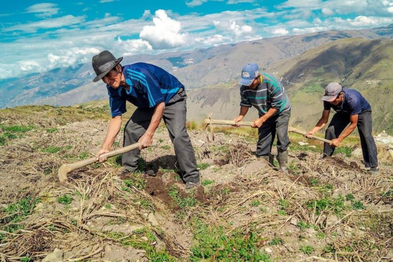 Bono Yanapay Perú ampliará su cobertura hacia pequeños agricultores