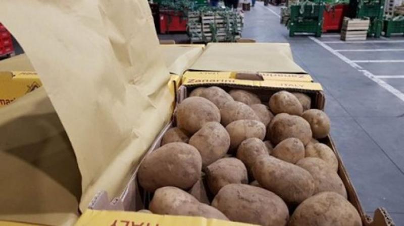Brasil enfoca su producción de papas en el mercado interno