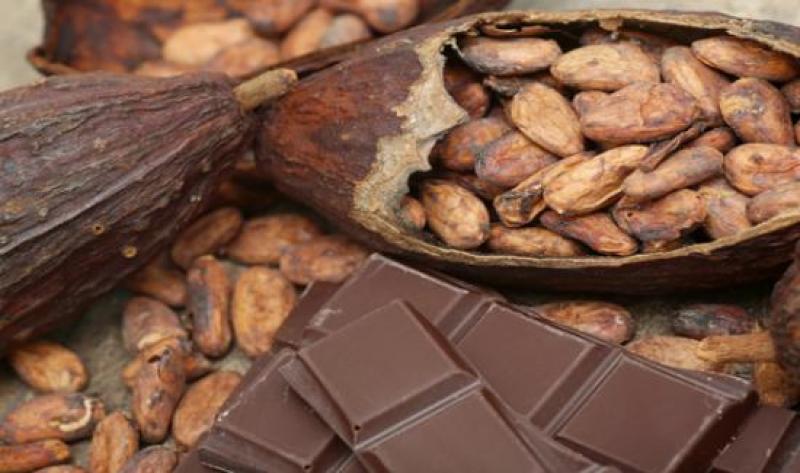Cacaoteros y chocolateros peruanos cierran ventas por US$ 5.7 millones en rueda de negocios virtual