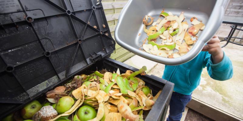 Cada año se desperdician 1.300 millones de toneladas de alimentos en el mundo