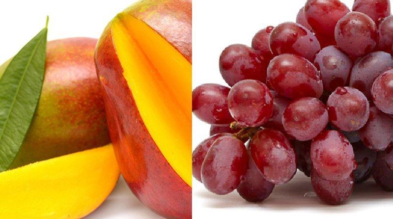 Camet Trading incursiona en mandarina, mango y uvas