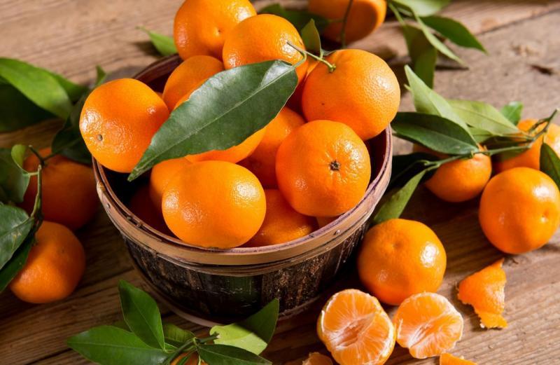 Campaña peruana de mandarina inició con el pie derecho