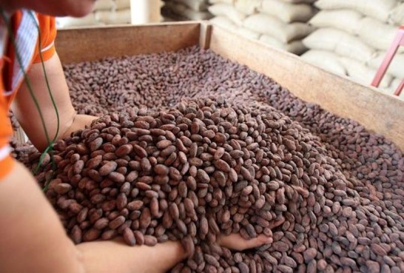 Cencosud se compromete a promover el cacao peruano y sus derivados a nivel nacional e internacional