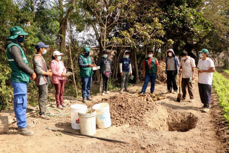 Charlas demostrativas afianzan la producción de frutos sanos en Monsefú