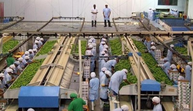 Comisión Agraria del Congreso formará mesa técnica para debatir proyectos sobre cambio de Ley de Promoción Agraria