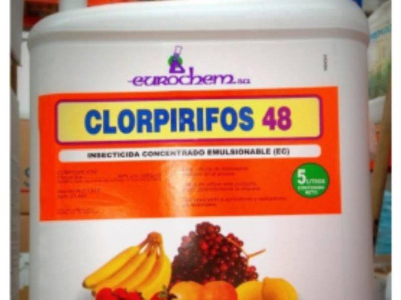 Comisión Europea oficializa prohibición de uso del clorpirifos desde febrero de 2020