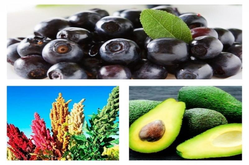 Compradores de China interesados en superfoods de Perú