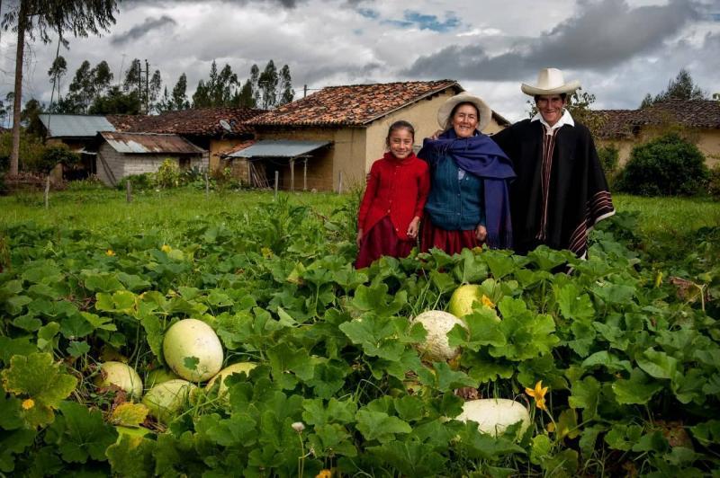 Conforman Grupo de Trabajo para elaborar reglamento de Registro de Cooperativas Agrarias