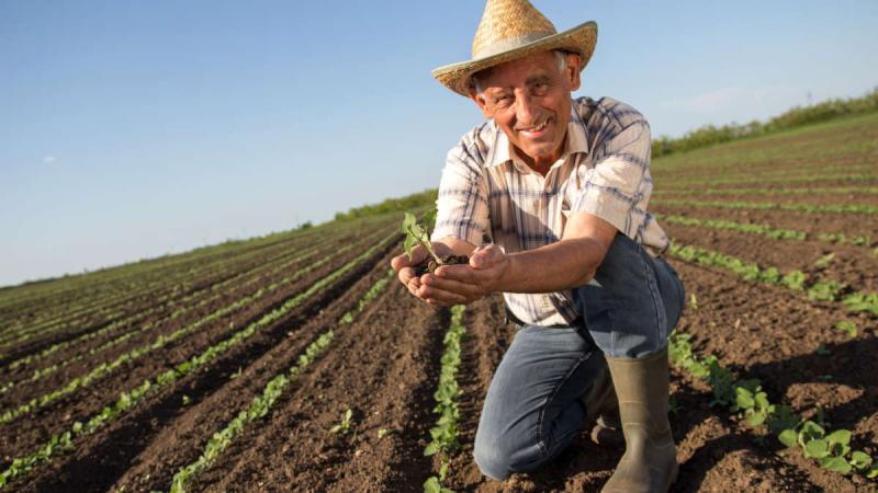 Congreso debatirá hoy iniciativa que propone crear un régimen previsional especial de pensiones para los agricultores