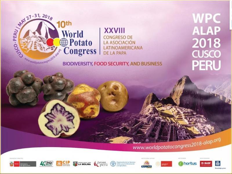 CONGRESO MUNDIAL DE LA PAPA 2018: LA OPORTUNIDAD DE GLOBALIZAR LA PAPA PERUANA