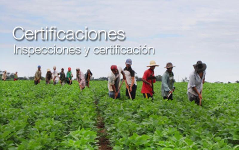 Control Union certifica más de 200 mil hectáreas en Perú