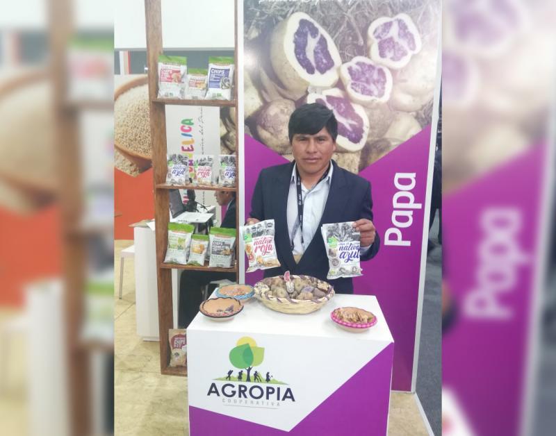 Cooperativa Agraria Agropía destina 230 toneladas de papa al año para convertirlas en snacks