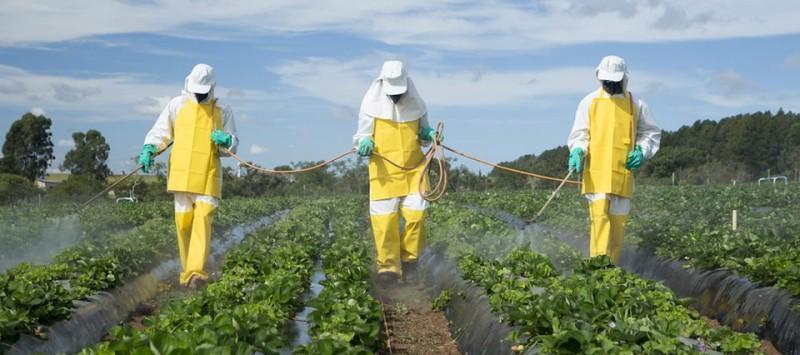 CultiVida desarrollará capacitaciones por el uso responsable de los productos fitosanitarios