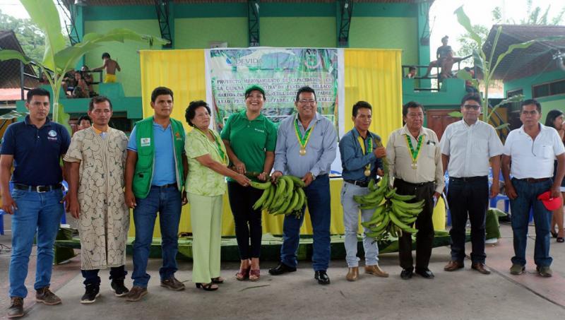 Devida apoyará a productores de plátano de Ucayali para mejorar calidad de sus cultivos