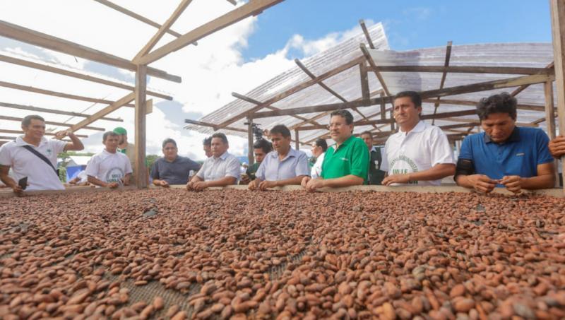Devida fortalecerá la cadena de valor del cacao en Huánuco