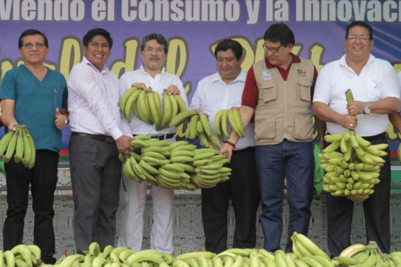 Devida propone recuperar el tiempo perdido con los agricultores plataneros