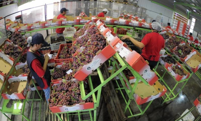 El crecimiento del consumo en Asia es clave para el futuro de la agroexportación peruana