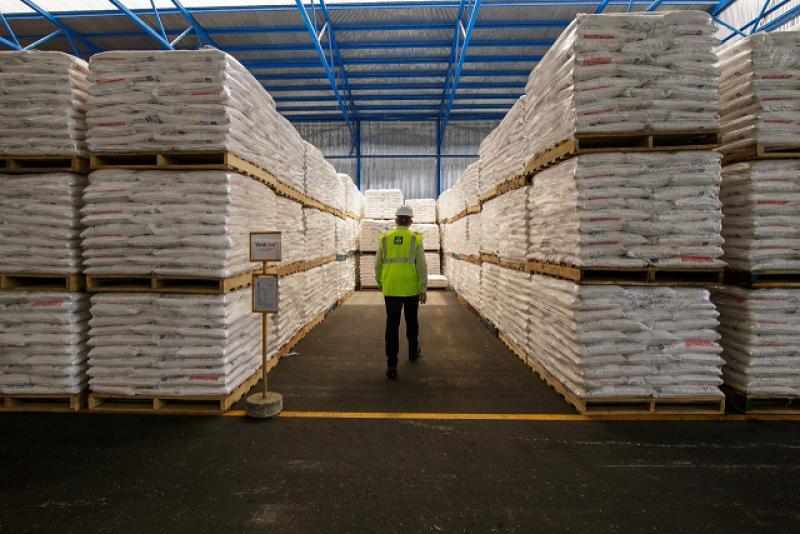 El fósforo en la siembra y trasplante del arroz