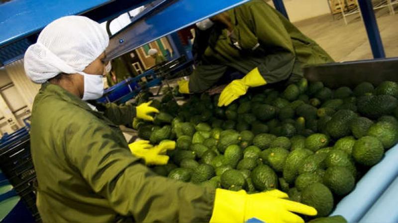 """""""El gobierno está dando toda la garantía para que el abastecimiento de alimentos tanto interno y externo no pare"""""""