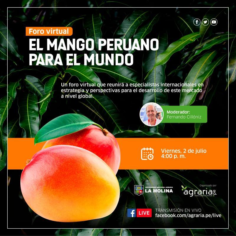 """""""EL MANGO PERUANO PARA EL MUNDO"""": Un foro virtual que reunirá a especialistas internacionales en estrategia y perspectivas para el desarrollo de este mercado a nivel global"""