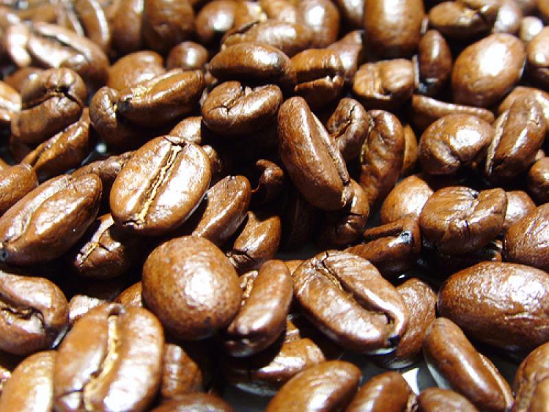 EN BUSCA DEL NUEVO MEJOR CAFÉ PERUANO