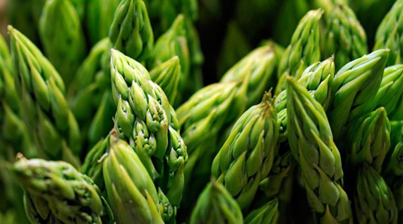 Enero: exportaciones de espárragos frescos llegaron a US$ 35 millones