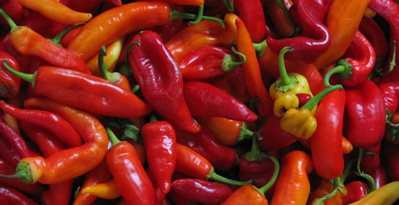 Exportaciones agrícolas peruanas sumaron US$ 729 millones en octubre de 2020