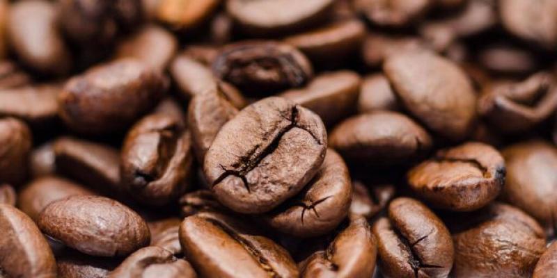 Exportaciones de cacao en grano llegaron a valores de US$ 109 millones