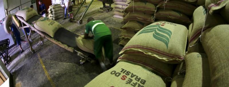 Exportaciones de café en Brasil alcanzaron los 31.52 millones de sacos, registrando un aumento de 15% en 2018
