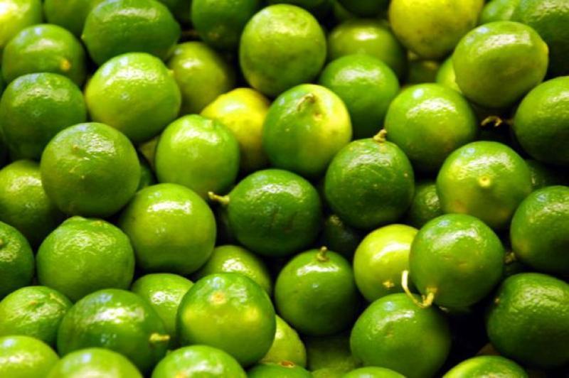 Exportaciones de limón Tahití crecerían alrededor de 75% este año