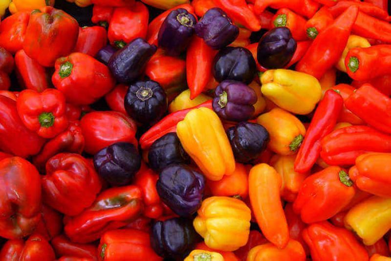 Exportaciones de peruanas de capsicum alcanzarían los US$ 246 millones este año