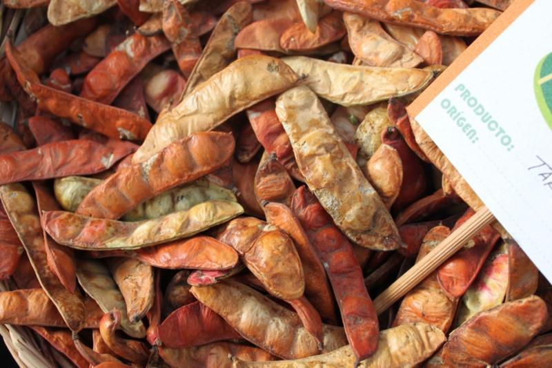 Exportaciones de tara en goma suman US$ 11.5 millones entre enero y septiembre