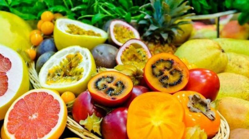FAO prevé fuerte crecimiento en comercio de frutos tropicales exportados por América Latina