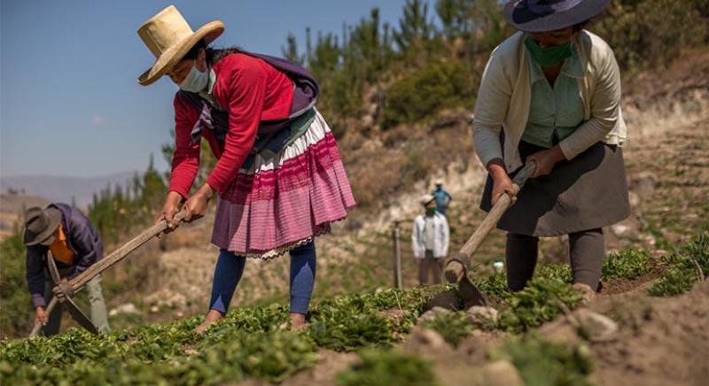 Formagro lanza edición extraordinaria del Fondo Wiñay en Lima y Áncash
